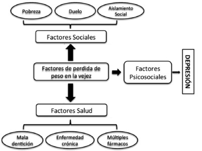 Perdida de peso en funcion tasa metabolica basal cell carcinoma